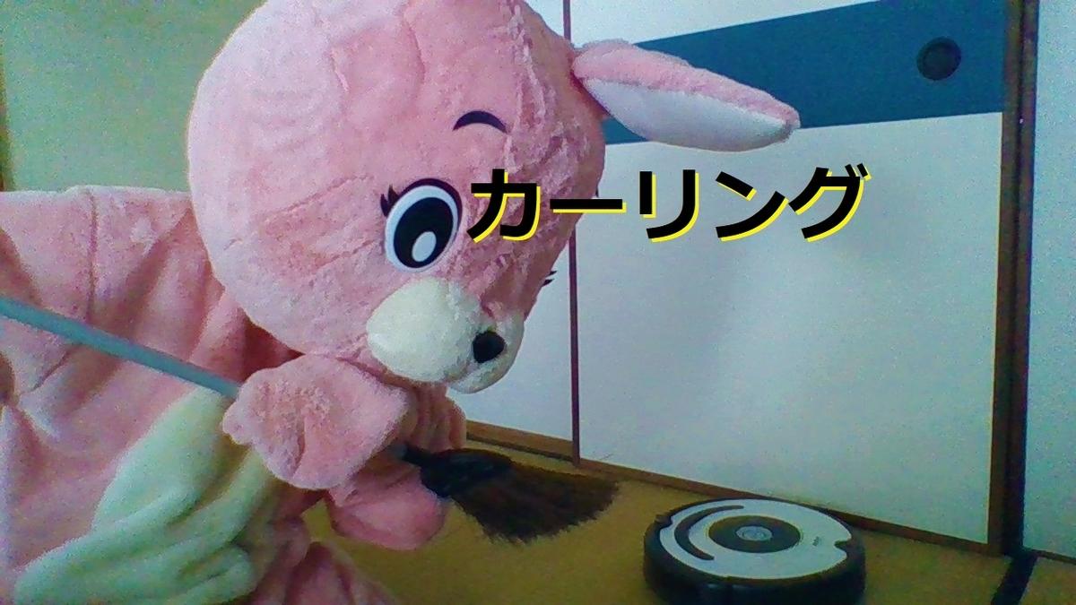 f:id:pinkchanusagi:20210418083812j:plain
