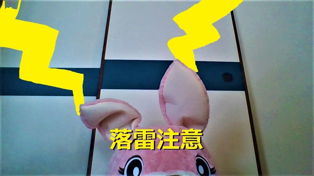 f:id:pinkchanusagi:20210421101743j:plain