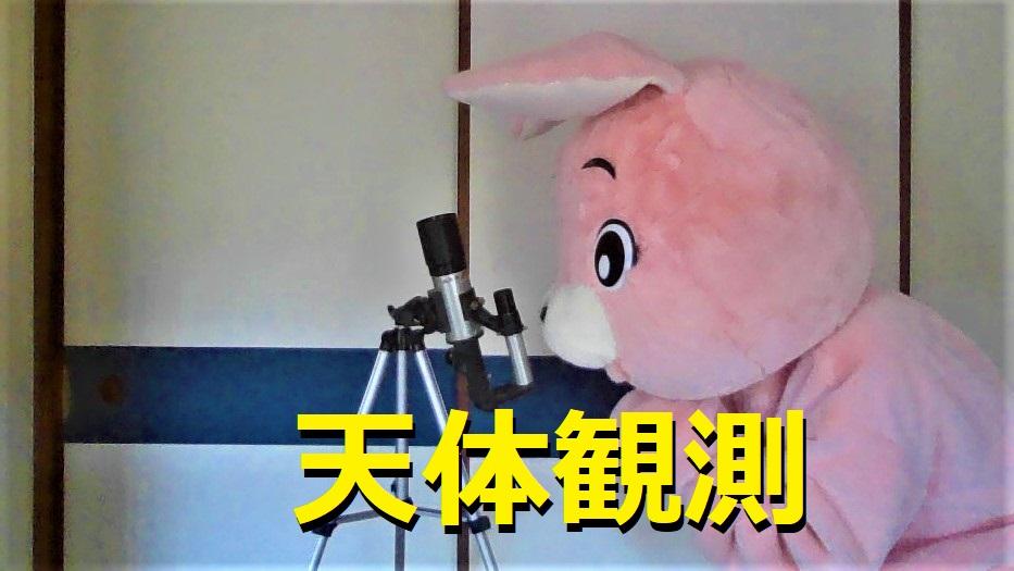 f:id:pinkchanusagi:20210428091033j:plain