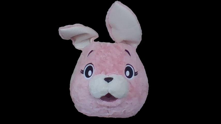 f:id:pinkchanusagi:20210428091554j:plain
