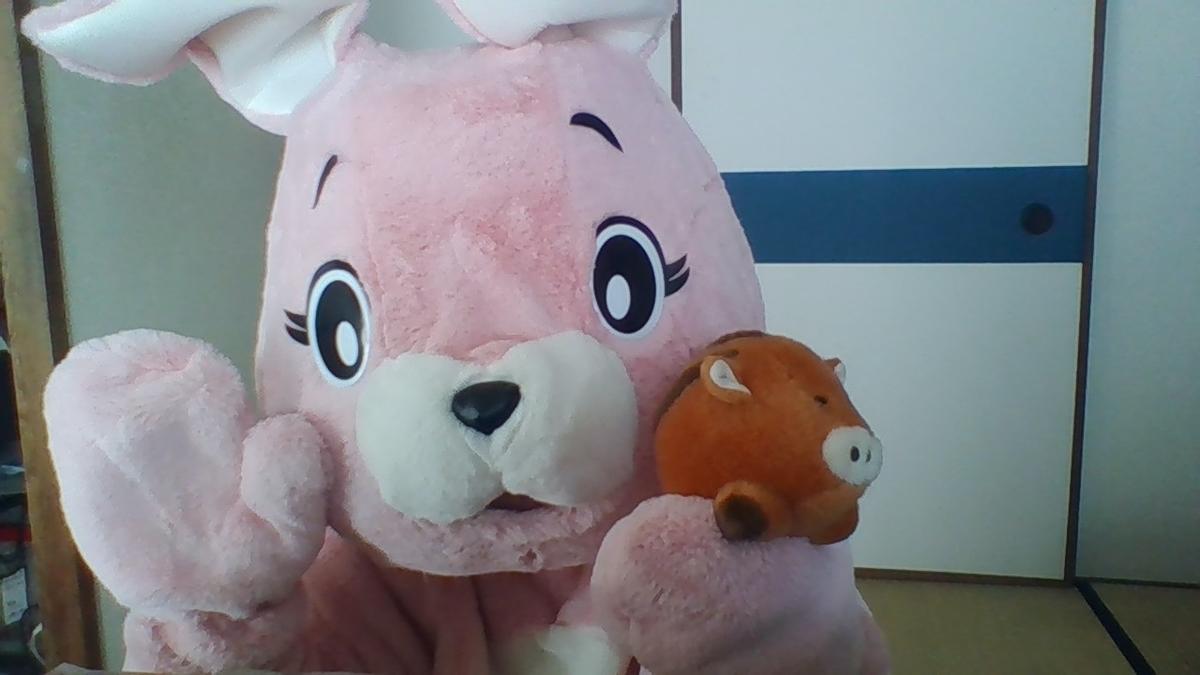 f:id:pinkchanusagi:20210501122227j:plain