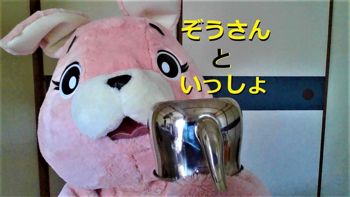 f:id:pinkchanusagi:20210501122415j:plain