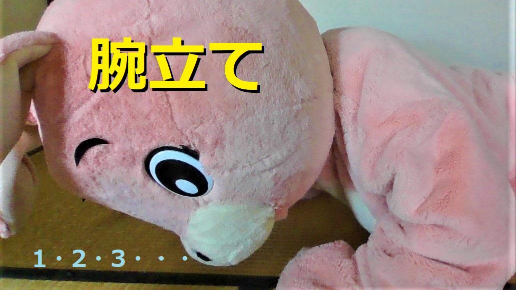 f:id:pinkchanusagi:20210504101019j:plain