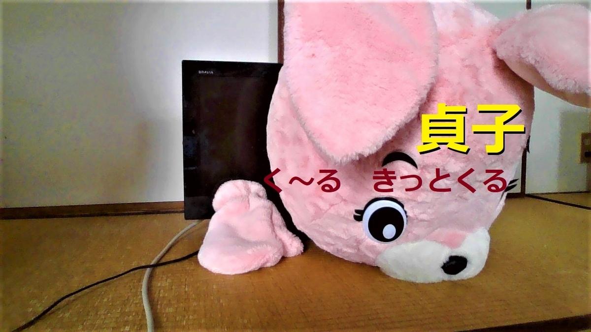 f:id:pinkchanusagi:20210504101337j:plain