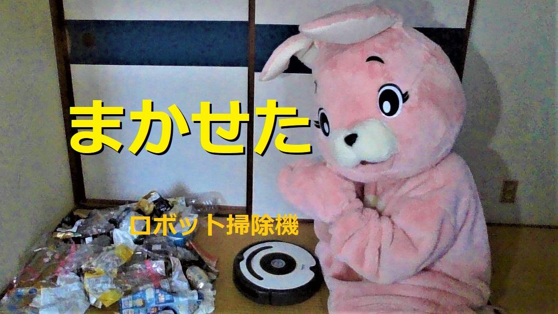 f:id:pinkchanusagi:20210507103238j:plain