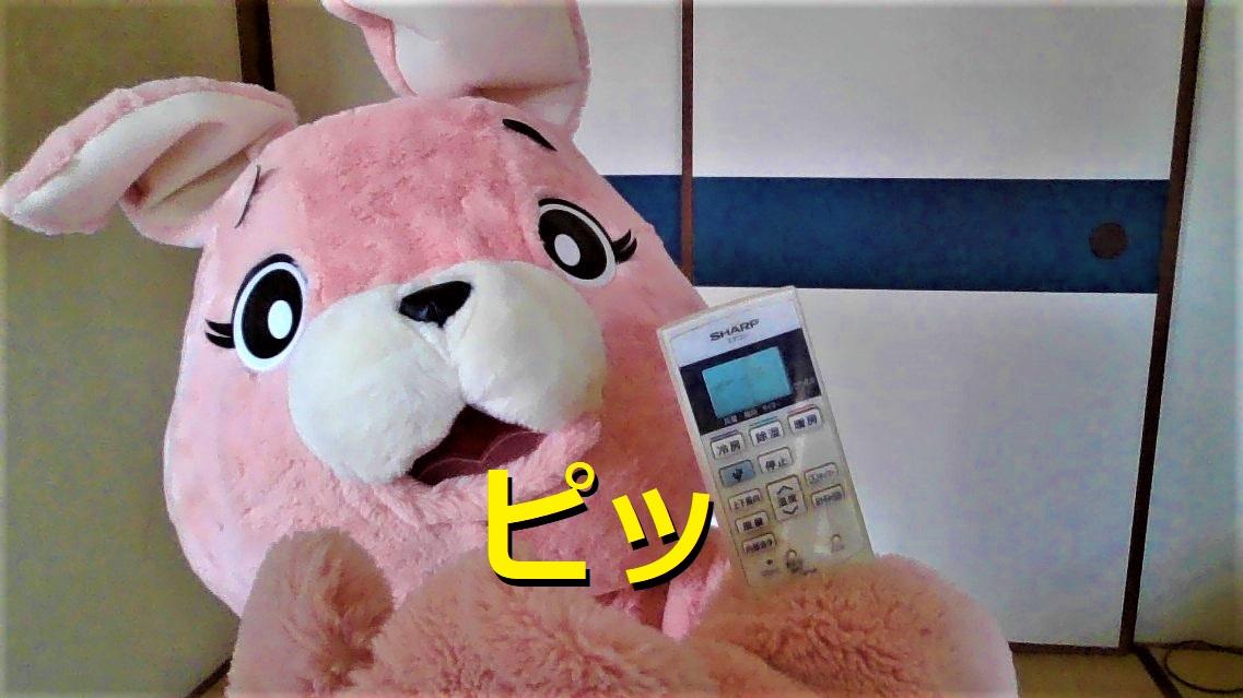 f:id:pinkchanusagi:20210510133348j:plain