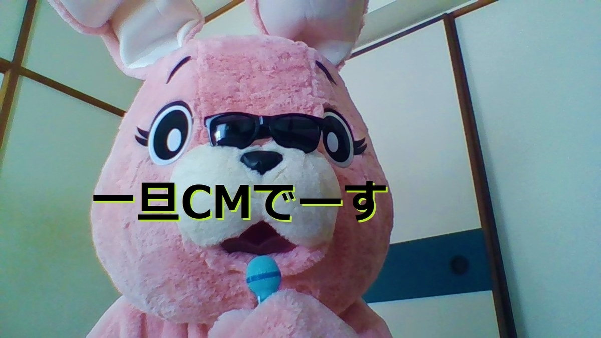 f:id:pinkchanusagi:20210512172435j:plain