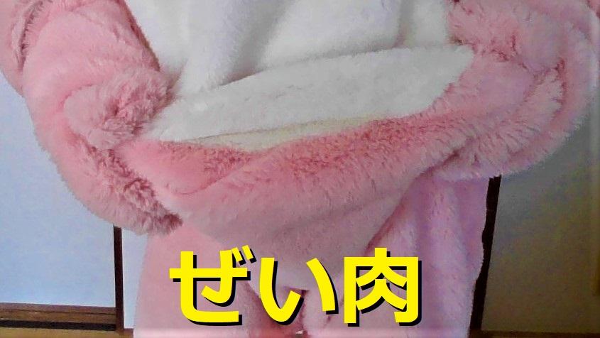 f:id:pinkchanusagi:20210516143431j:plain