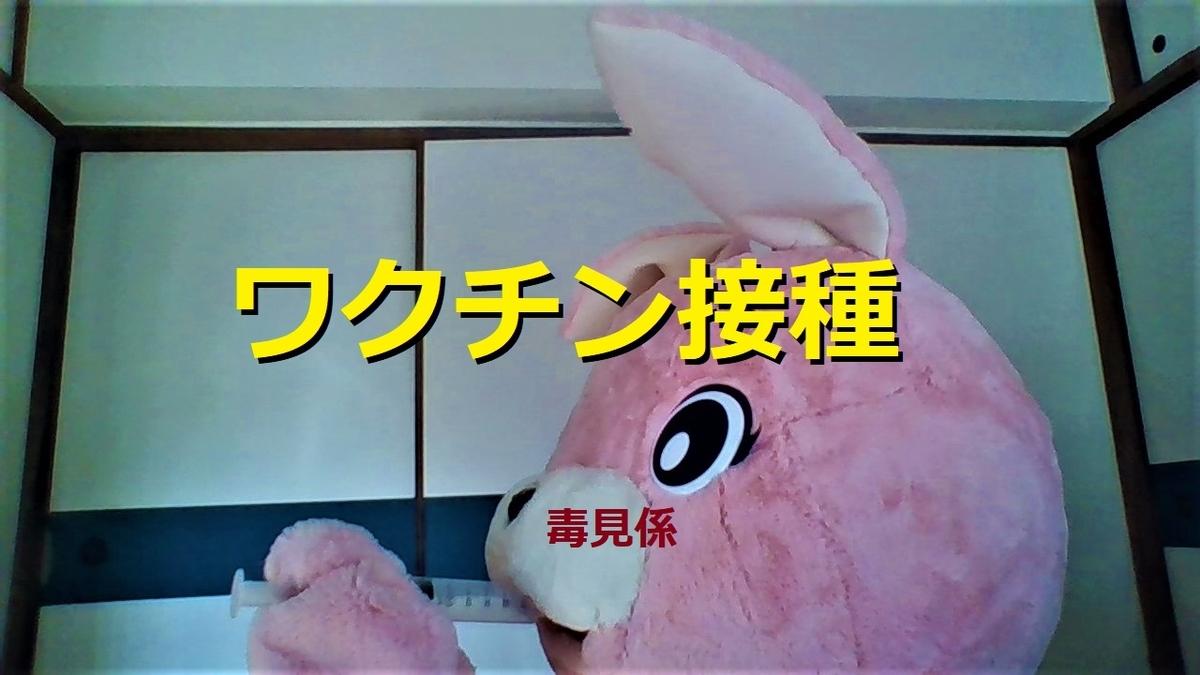f:id:pinkchanusagi:20210516145645j:plain