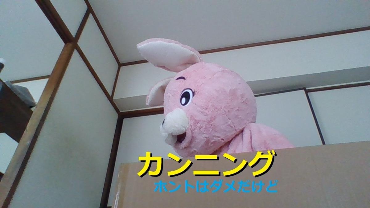 f:id:pinkchanusagi:20210522111007j:plain
