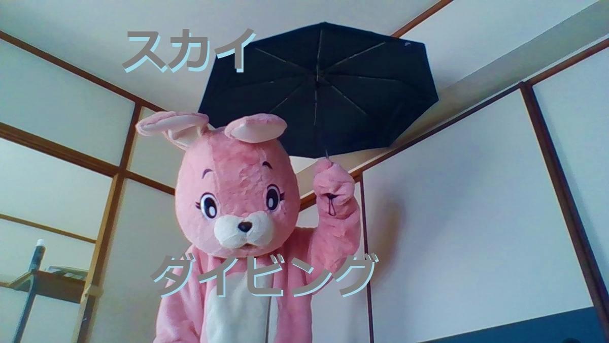 f:id:pinkchanusagi:20210602164448j:plain