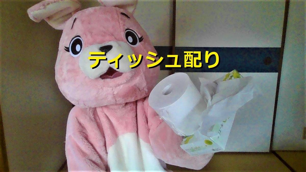 f:id:pinkchanusagi:20210609084822j:plain
