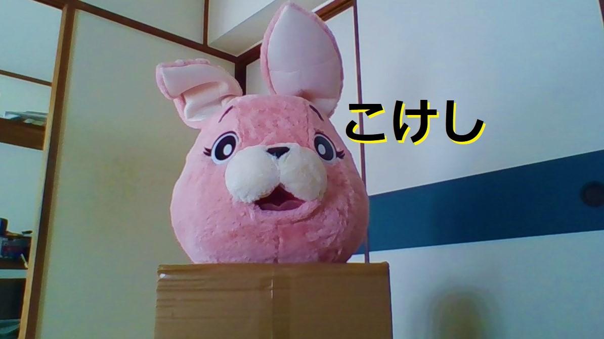 f:id:pinkchanusagi:20210612144831j:plain