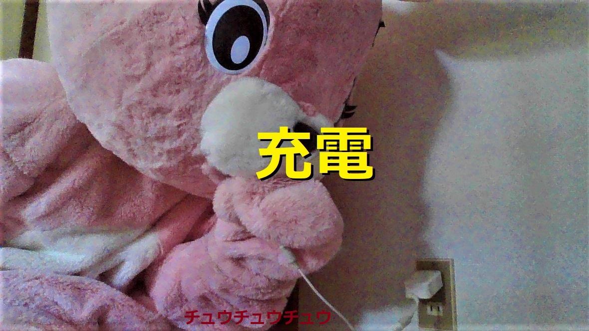 f:id:pinkchanusagi:20210621132517j:plain