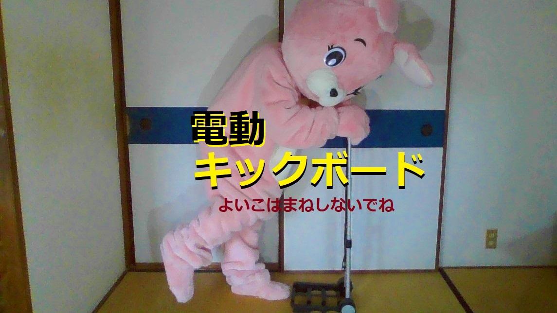f:id:pinkchanusagi:20210621132821j:plain