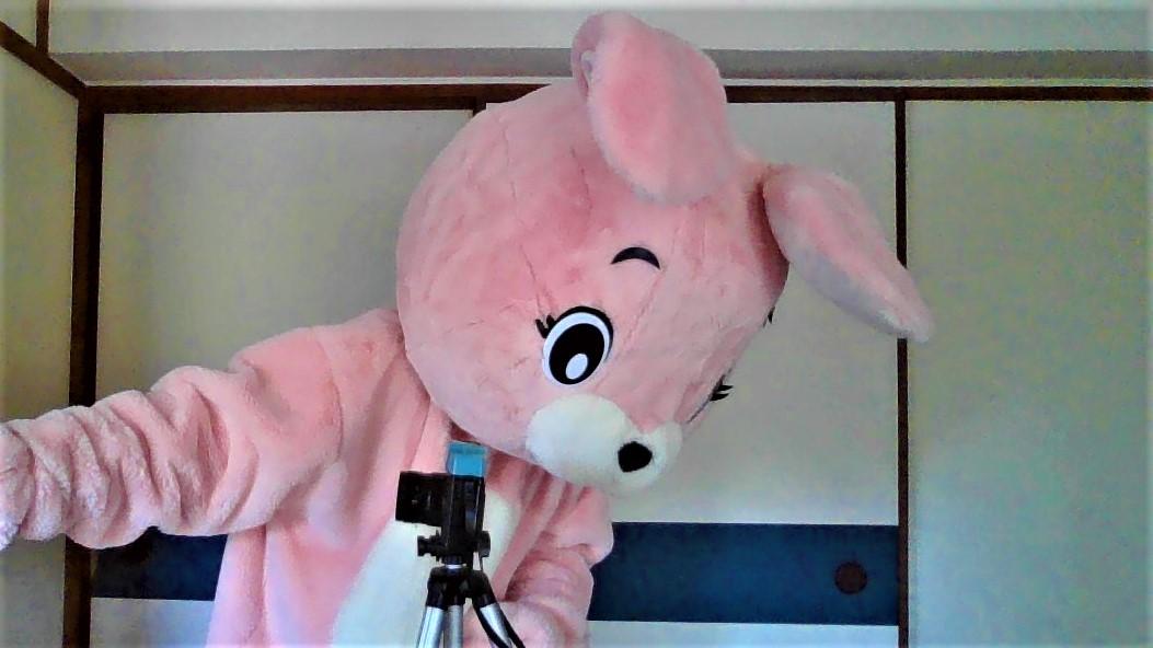 f:id:pinkchanusagi:20210626181057j:plain