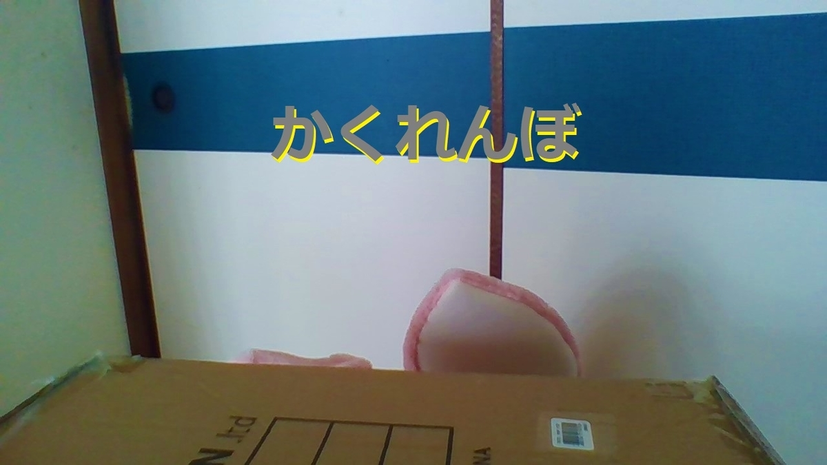 f:id:pinkchanusagi:20210626181948j:plain