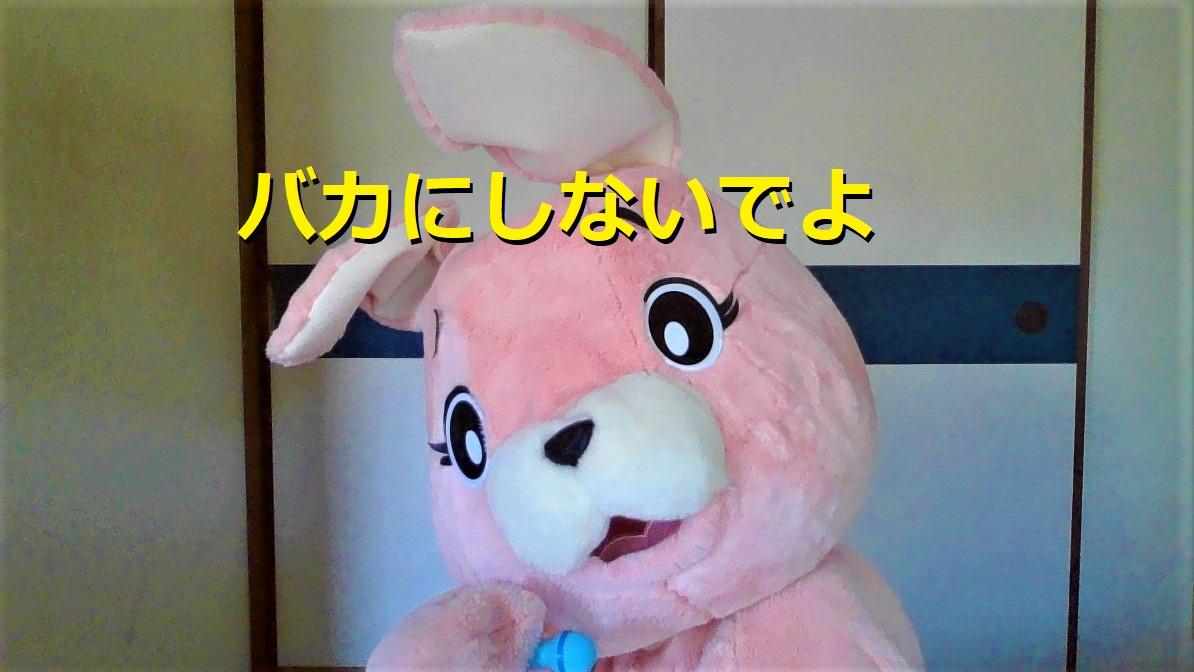 f:id:pinkchanusagi:20210703081731j:plain