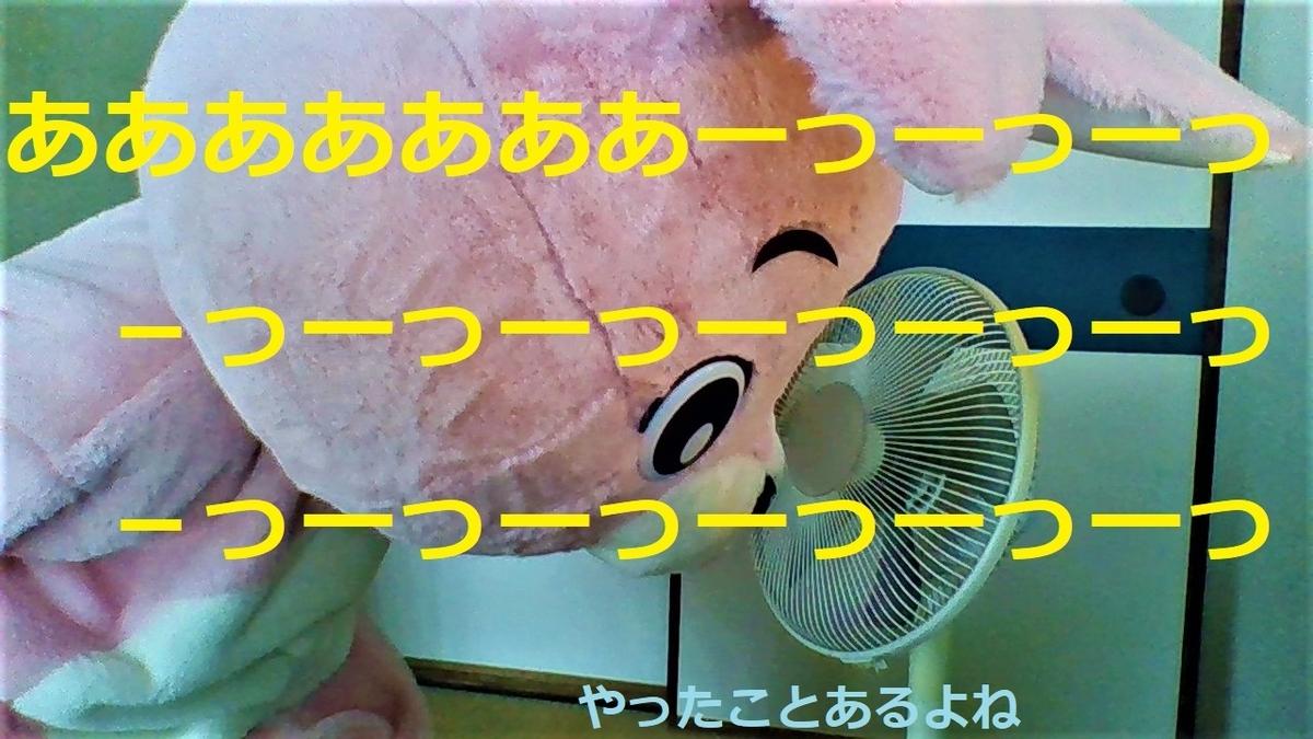 f:id:pinkchanusagi:20210706150424j:plain