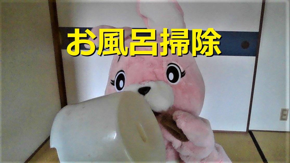 f:id:pinkchanusagi:20210709140440j:plain