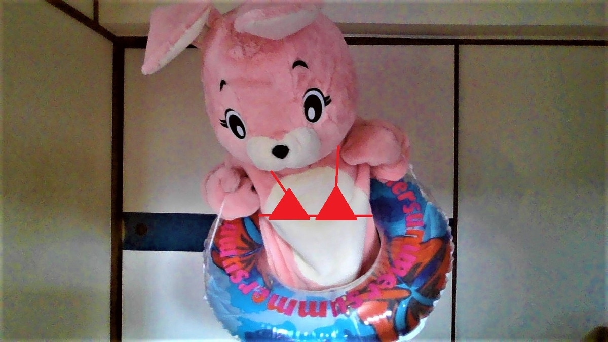 f:id:pinkchanusagi:20210709141713j:plain