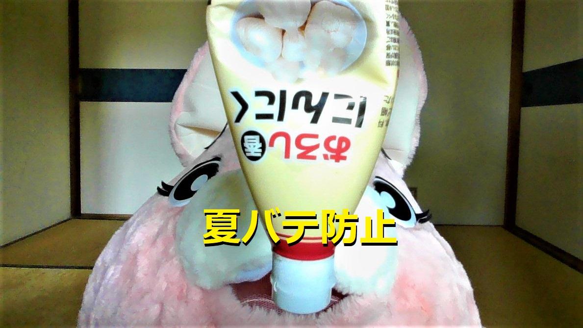 f:id:pinkchanusagi:20210712125101j:plain
