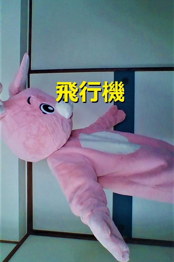 f:id:pinkchanusagi:20210714113107j:plain