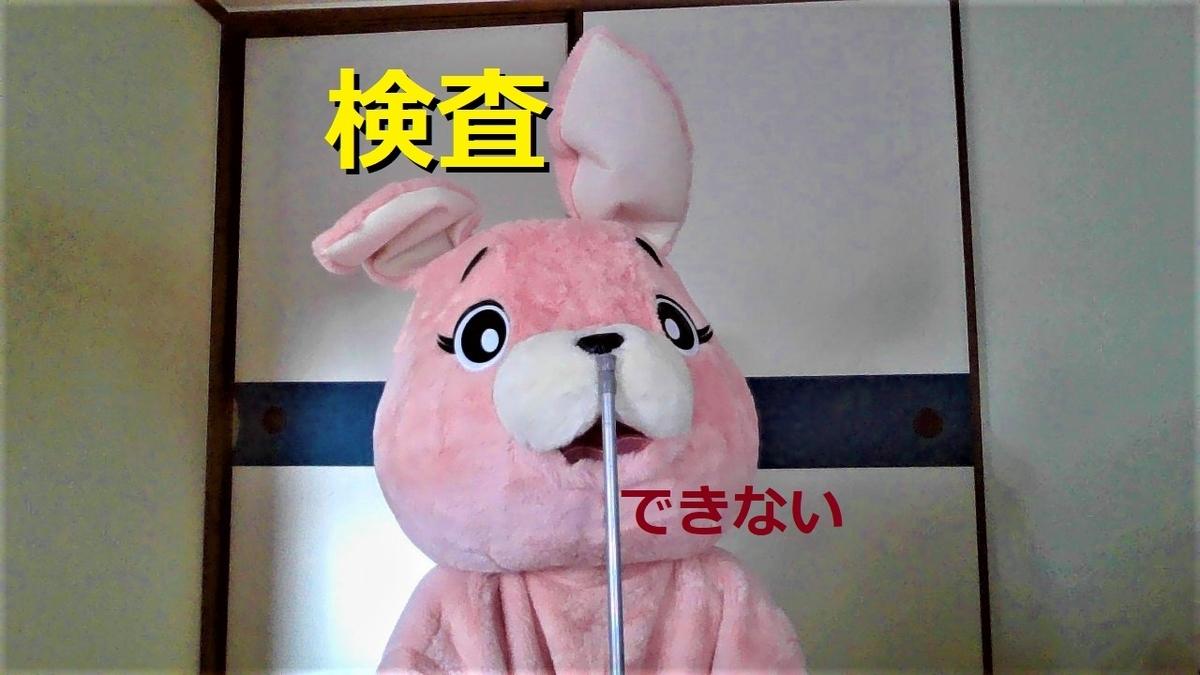 f:id:pinkchanusagi:20210721154430j:plain