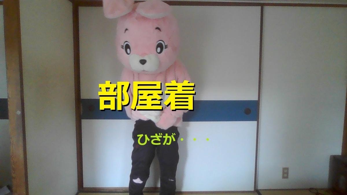 f:id:pinkchanusagi:20210802093800j:plain