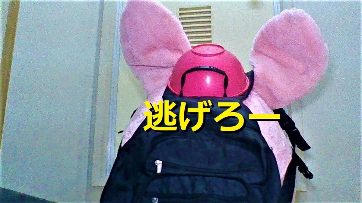 f:id:pinkchanusagi:20210813145734j:plain