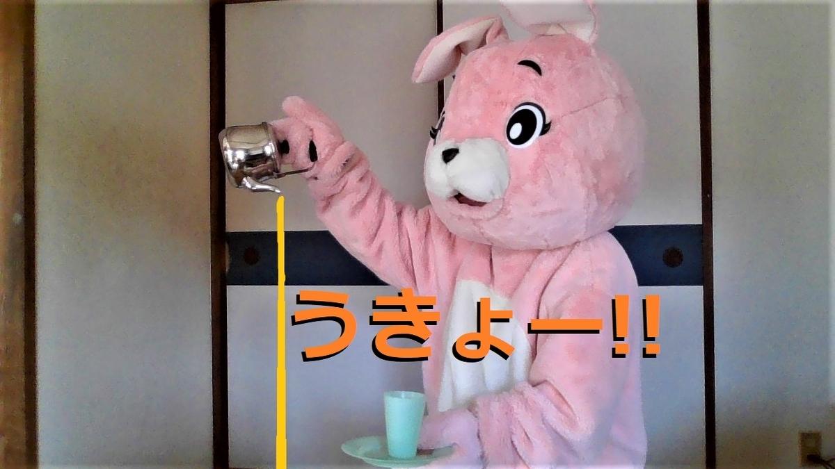 f:id:pinkchanusagi:20210817092311j:plain