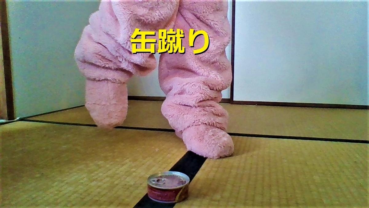 f:id:pinkchanusagi:20210817112225j:plain
