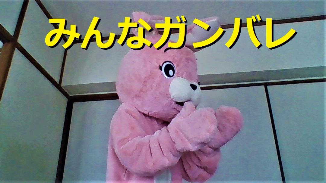 f:id:pinkchanusagi:20210823115926j:plain