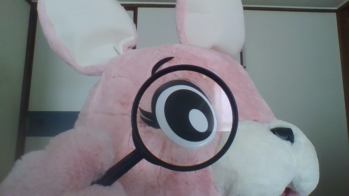 f:id:pinkchanusagi:20210830131615j:plain