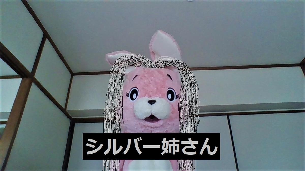 f:id:pinkchanusagi:20210905082632j:plain