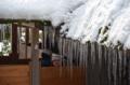 京都新聞写真コンテスト氷柱が並ぶ