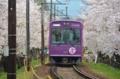 京都新聞写真コンテスト 桜トンネルを通過