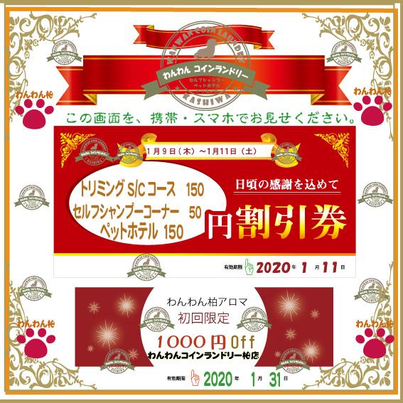 f:id:pinkfloyd411toto:20200109090301j:plain