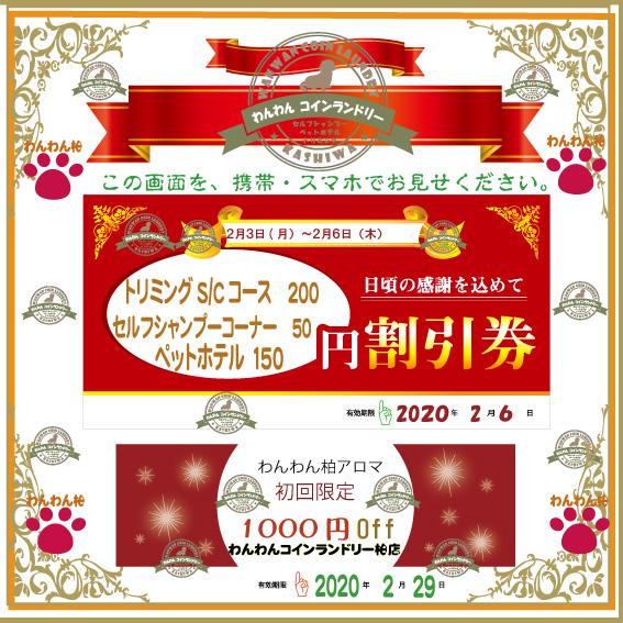 f:id:pinkfloyd411toto:20200203145204j:plain