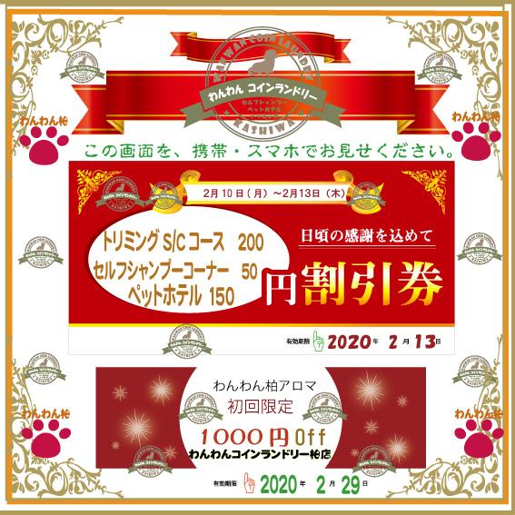 f:id:pinkfloyd411toto:20200210111351j:plain