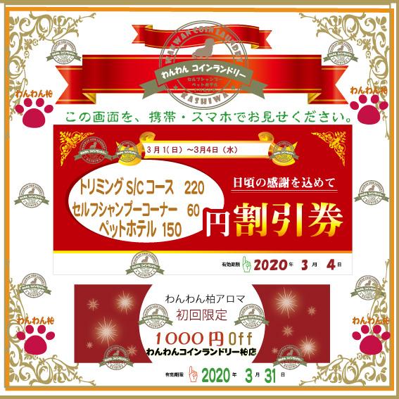 f:id:pinkfloyd411toto:20200301100745j:plain