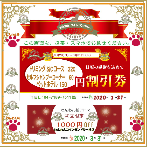 f:id:pinkfloyd411toto:20200329102630j:plain