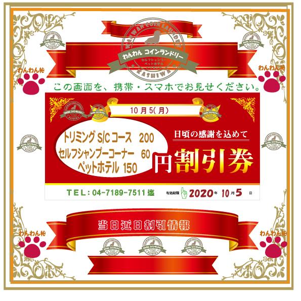 f:id:pinkfloyd411toto:20201004160030j:plain