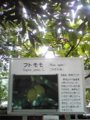 20080618135800