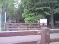 [川と橋][公園]石神井川@公園北橋(上流端・小金井公園)