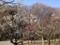 赤塚公園(城址地区)