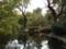 石神井公園 三宝寺池