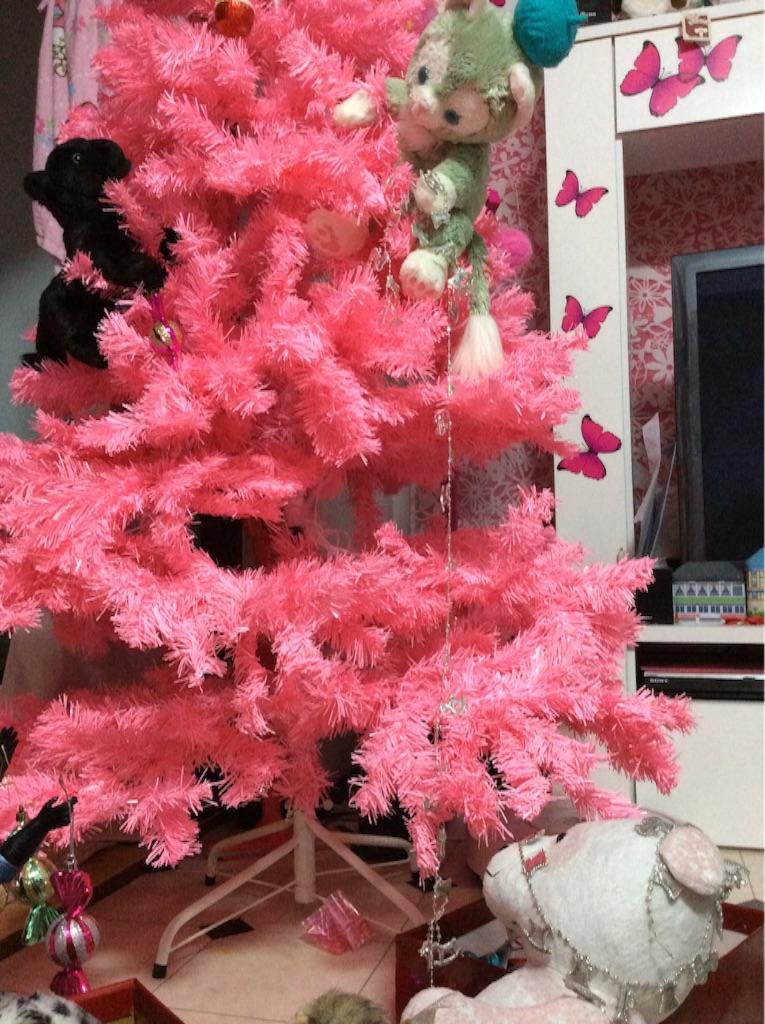 f:id:pinkstrawberryflavor:20151109175526j:image