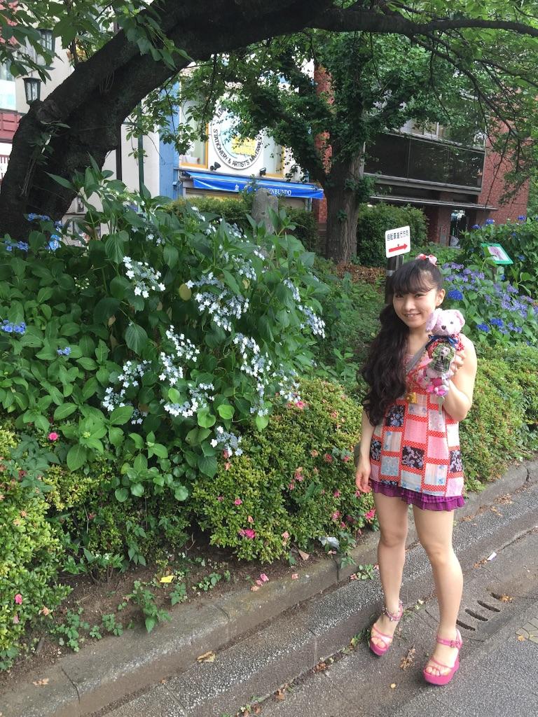 f:id:pinkstrawberryflavor:20160613142508j:image