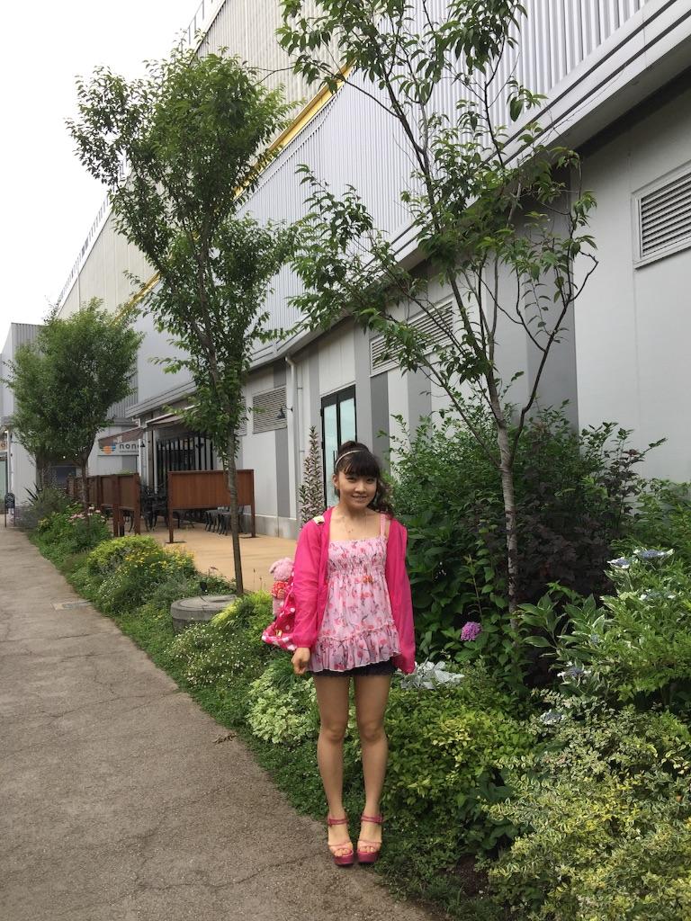 f:id:pinkstrawberryflavor:20160616232750j:image